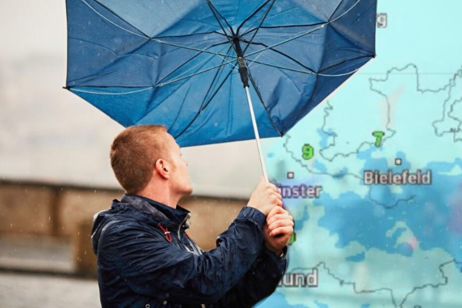 Der Sturm bleibt! Weiter Regen und heftige Böen am Wochenende