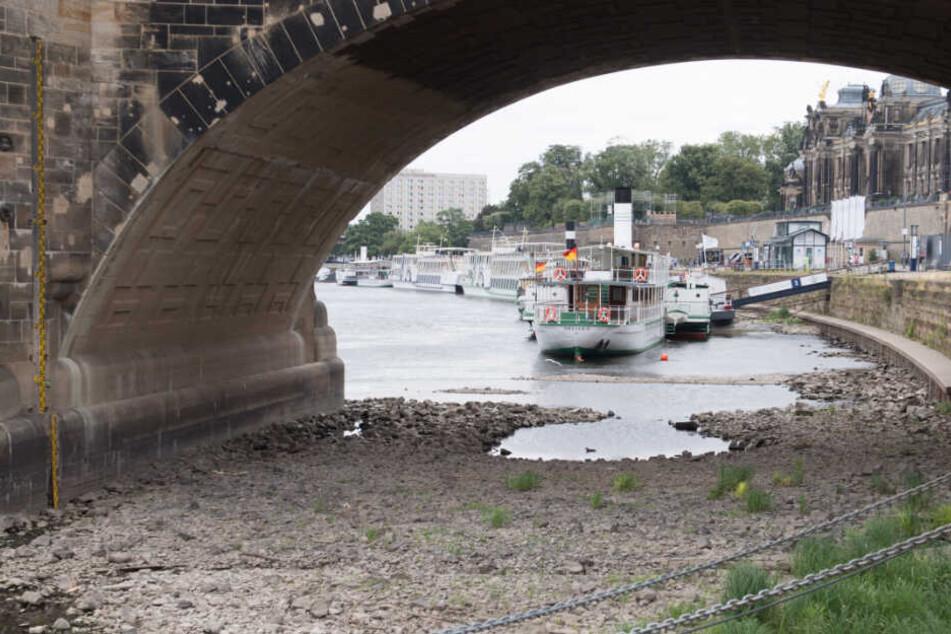 Im Sommer fuhren wegen Niedrigwasser keine Schiffe über die Elbe.