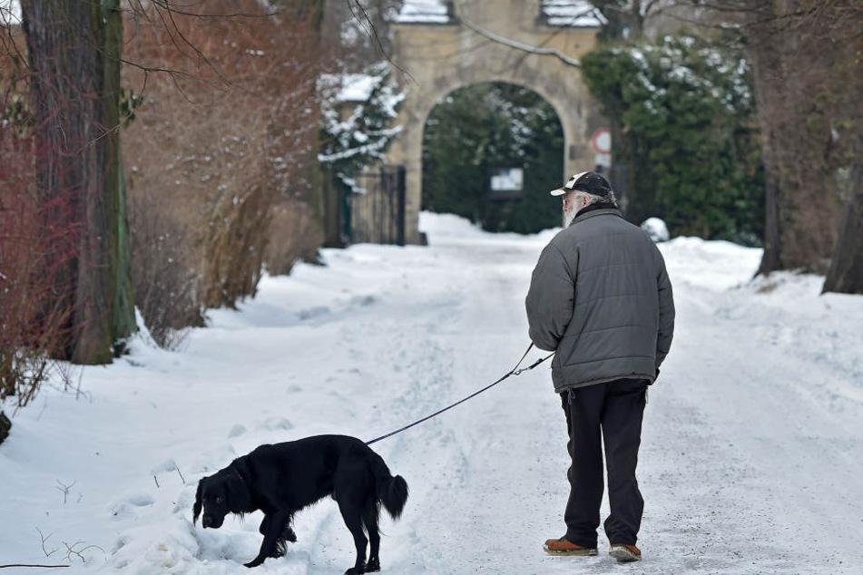 Gerade bei Senioren ist die Bindung zum Haustier oft riesengroß. Mancher  wünscht sich auch im Jenseits keine Trennung.