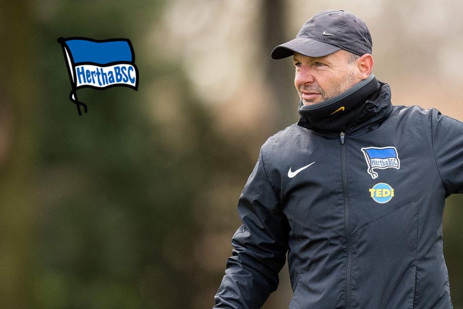 Hertha-Torwarttrainer in der Kritik: Um diese Sätze von Zsolt Petry geht es