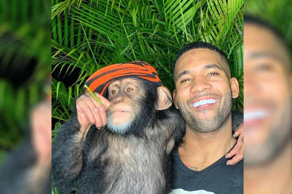 Tierliebhaber Mike Holston mit einem Schimpansen.