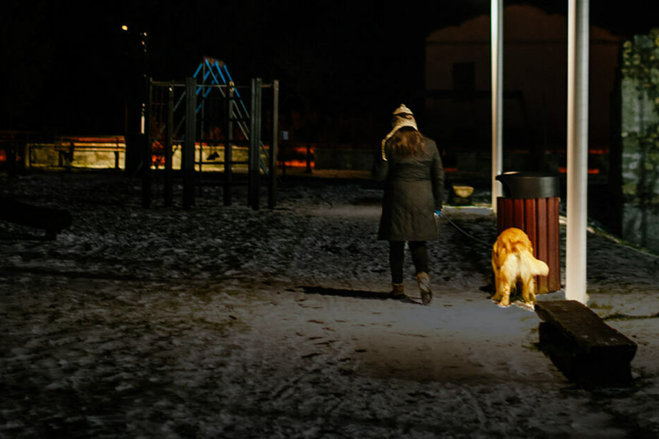 Die Frau war gerade mit ihren Hunden Gassi, als ein Fremder sie vergewaltigen wollte. (Symbolbild)