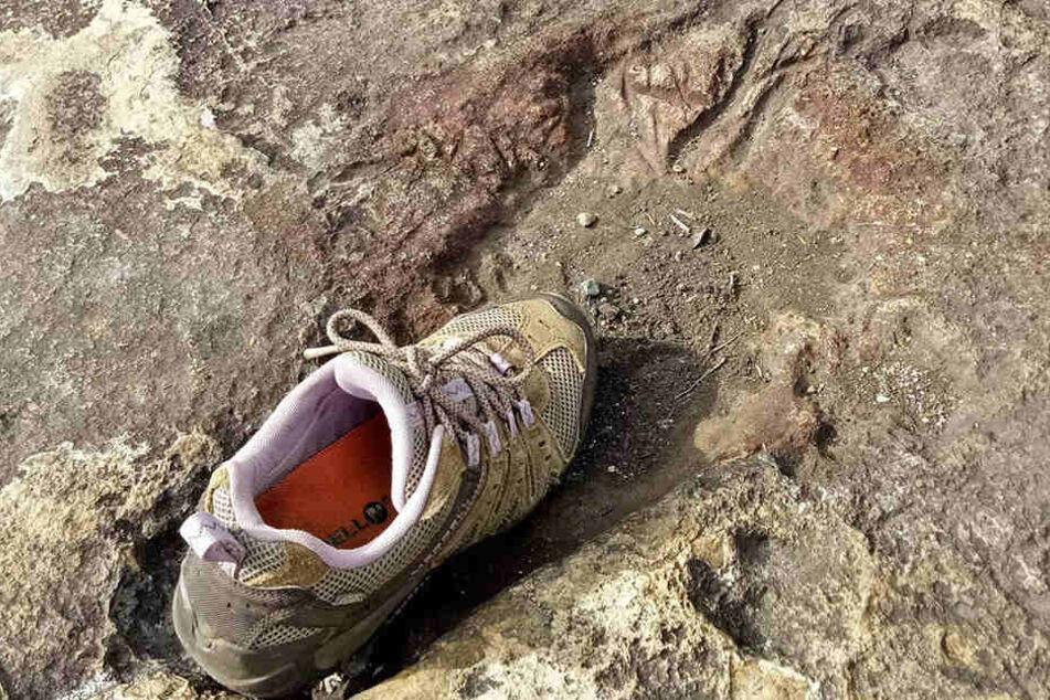 Ein Schuh in einem riesigen Fußabdruck.
