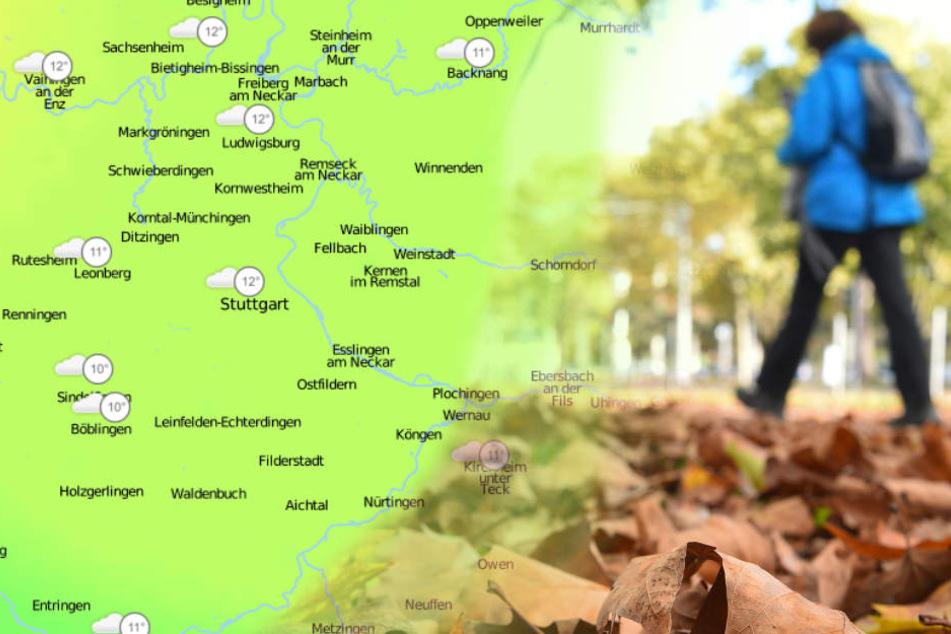 Diese Woche gilt es in der Region, das mildere Wetter nochmals zu genießen. (Bildmontage)