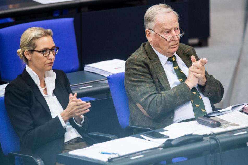 Alice Weidel (40) und Alexander Gauland (78) applaudieren bei einer Bundestags-Debatte. Ob sie die Statements des Grünen-Vorsitzenden Habeck auch begrüßen?