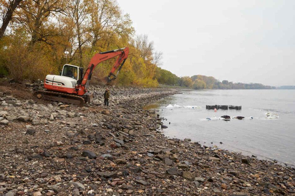 Durch den niedrigen Rheinpegel wurden 2018 wie hier in Neuwied mehrere Blindgänger im Uferbereich des Flusses gefunden.