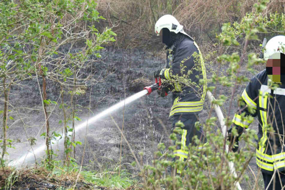 Ein Kamerad der Feuerwehr wurde bei dem Einsatz verletzt.