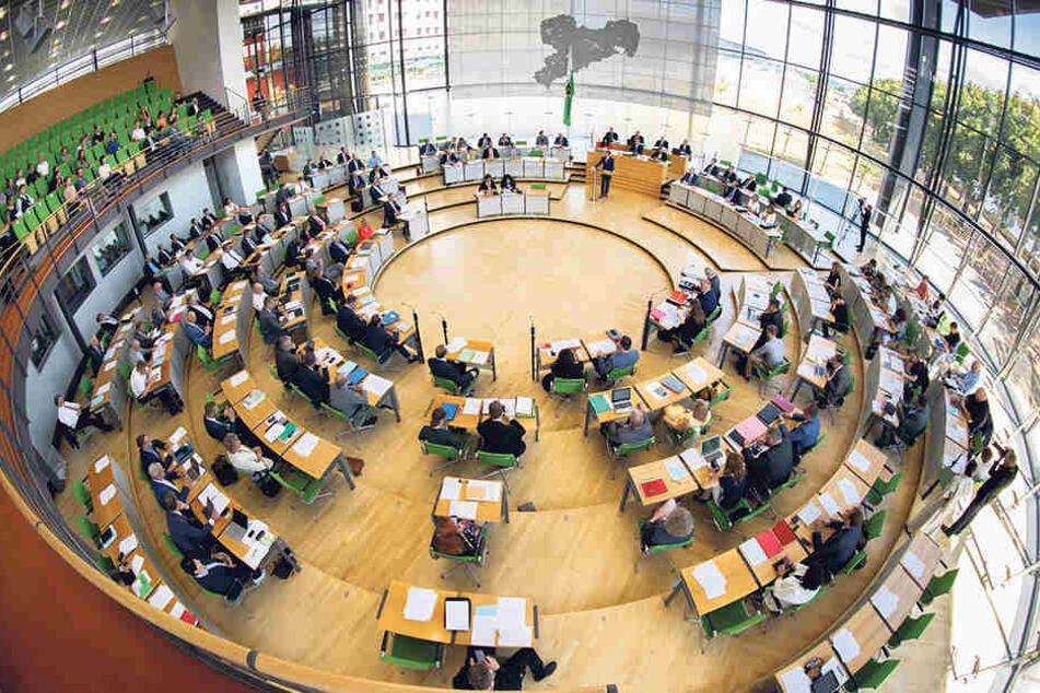 Die FDP möchte gerne wieder in den Sächsischen Landtag einziehen. Dafür muss sie am 1. September aber erst einmal die 5 Prozent-Hürde nehmen.