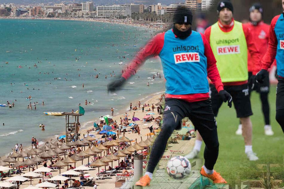 Die Kölner Spieler fliegen im Januar nach Mallorca ins Trainingslager. (Bildmontage)