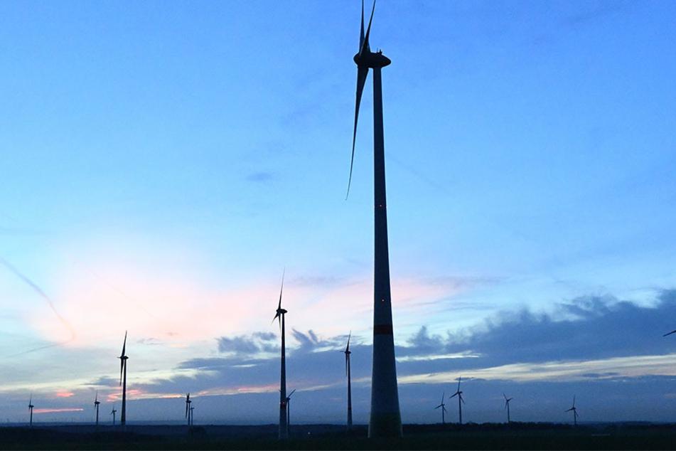 Diese Windkraftanlagen stehen in Paderborn. Ein Lippstädter soll ähnliches in baden geplant haben. (Symbolbild)