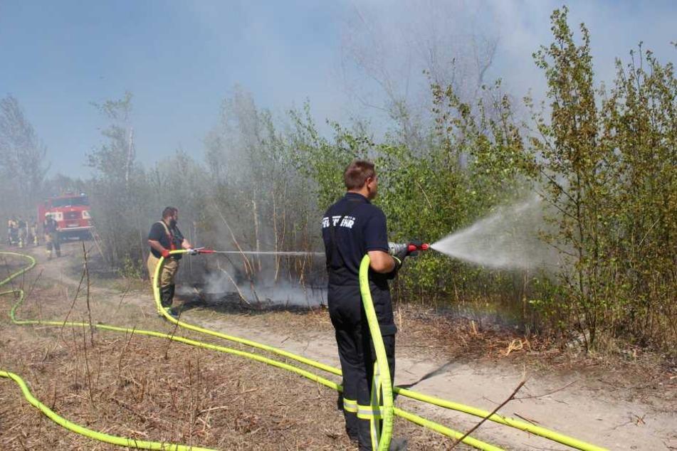 Kameraden aus Regis-Breitingen, Lobstädt und Neukieritzsch löschten den Brand.
