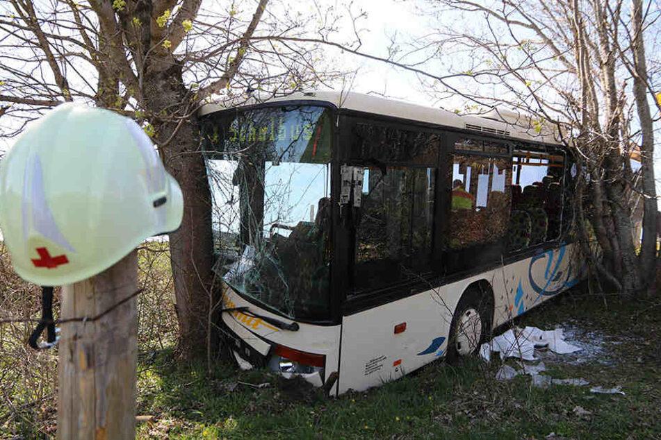 Zwei der Opfer sind nach ersten Erkenntnissen der Polizei bei dem Zusammenstoß zwischen dem Bus und einem Auto schwer verletzt worden.