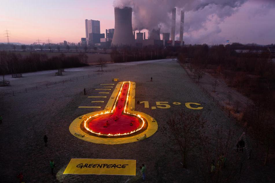 Greenpeace setzt sich für einen besseren Klimaschutz ein und fordert einen raschen Ausstieg aus dem Braunkohleabbau.