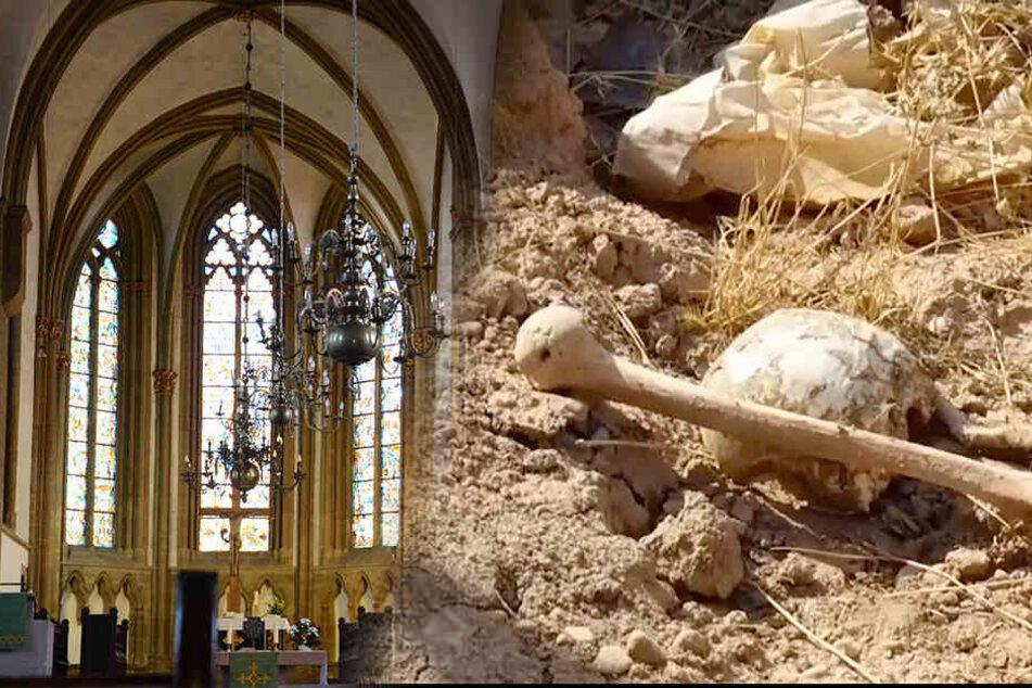 Umzugskartons voll mit Knochen bei Bauarbeiten entdeckt