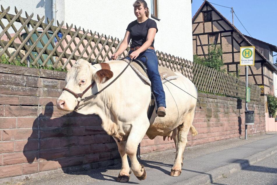 Sonja Keller (22) reitet mit der Kuh Melina aus. Sie reitet öfters auf der Kuh durchs Dorf.