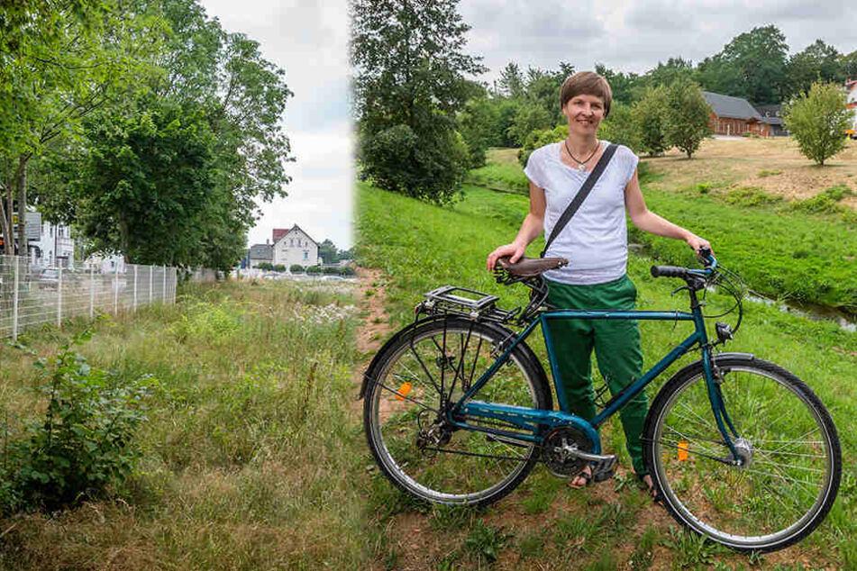 Chemnitzer Grüne fordern: Macht Brachen fit für den Klimawandel!