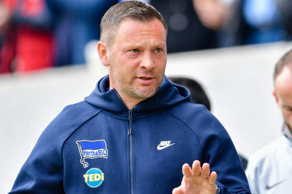 Pal Dardai wird ab Sommer nicht mehr Hertha BSC trainieren.