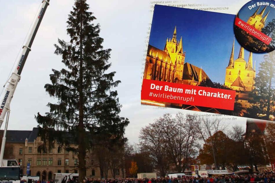 Weihnachtsbaum Herkunft.Weil Er So Hässlich Ist Erfurter Weihnachtsbaum Bekommt Eigene