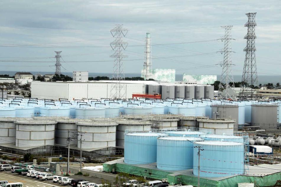 Die noch immer wachsende Menge an verseuchtem und leicht radioaktivem Wasser im zerstörten Atomkraftwerk Fukushima Daiichi wird in etwa 900 riesigen Tanks gelagert.