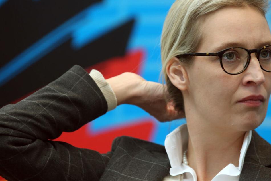 Gegen die Bundestagsfraktionschefin Alice Weidel und andere Mitglieder ihres AfD-Kreisverbands am Bodensee wird wegen Spenden in einer Gesamthöhe von 132.000 Euro ermittelt.