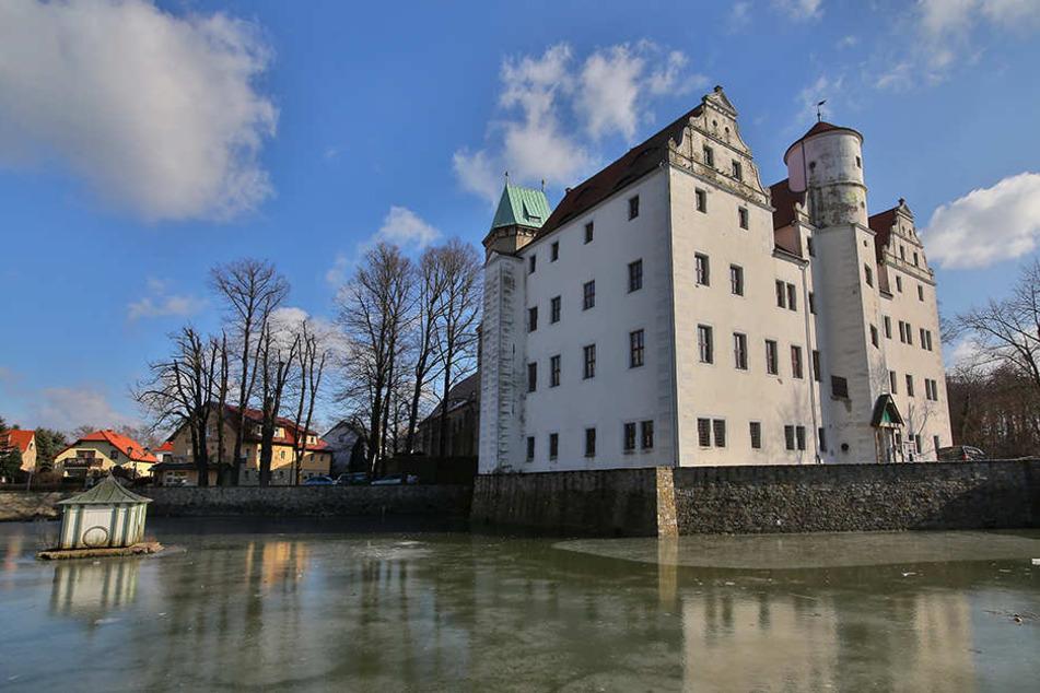 Momentan ist der Teich am Schönfelder Schloss zugefroren.