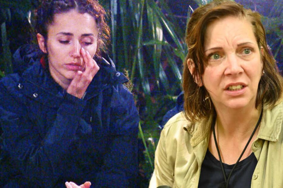 """Dschungelcamp Tag 10: Danni ist geschockt! """"Bin fett, hässlich und so"""""""