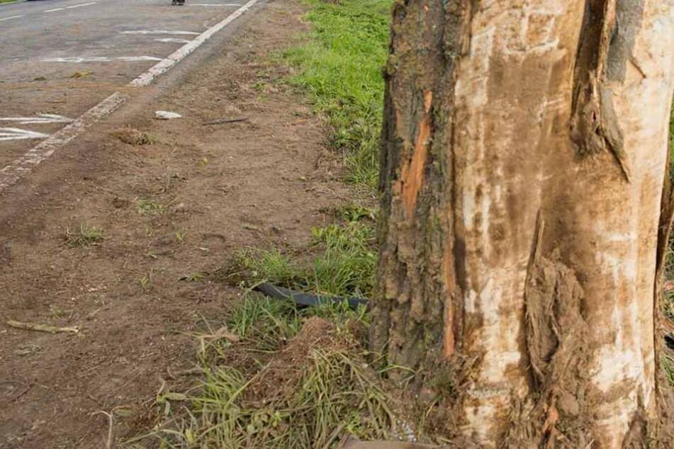 Nahe Pliezhausen (Landkreis Reutlingen) prallte ein 76-Jähriger mit seinem Wagen gegen mehrere Bäume. Er verstarb noch an der Unfallstelle. (Symbolfoto)