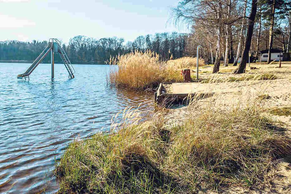 Baden erlaubt, campen verboten: Wegen seiner idyllischen Lage ist der Brettmühlenteich ein beliebtes Erholungszentrum 25 km nördlich von Dresden.