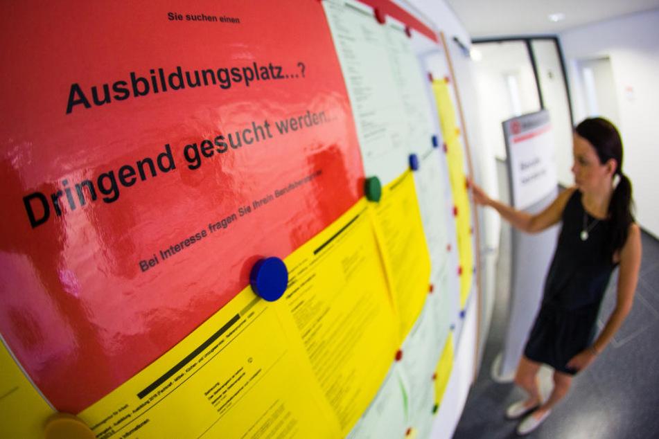 Erschreckend! Zehntausende Jugendliche in Sachsen ohne Ausbildungsvertrag