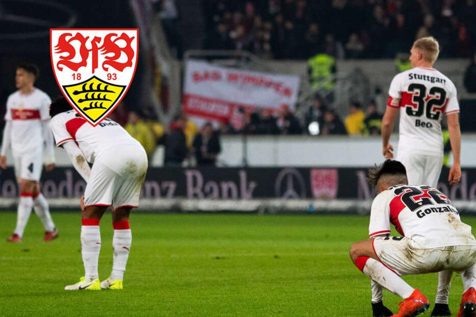 VfB-Krise: Die Gründe sind offensichtlich