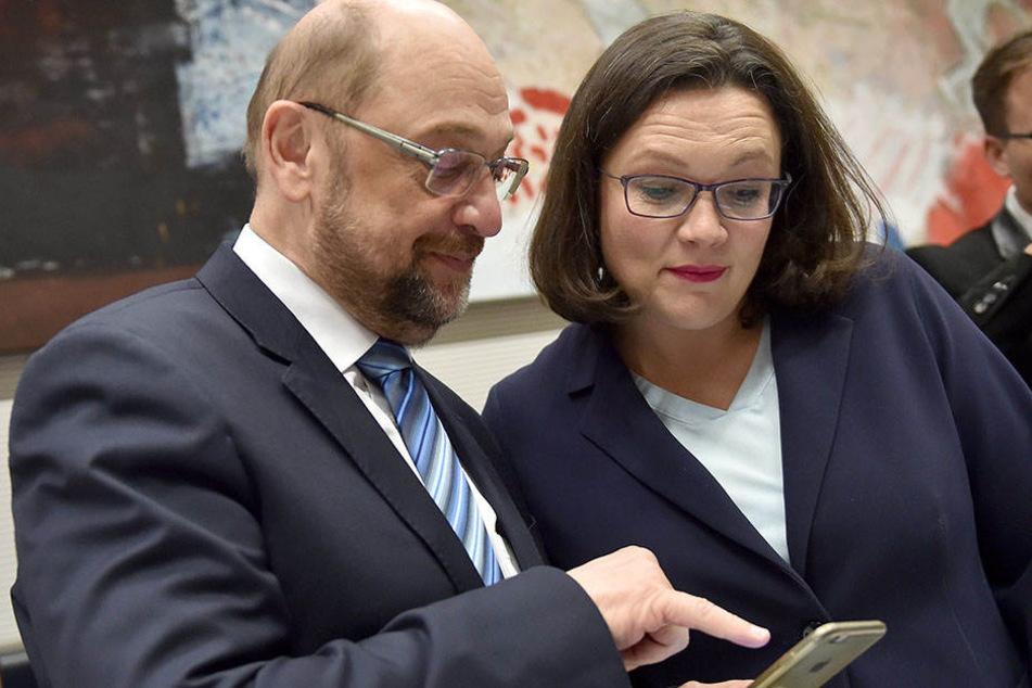 Andrea Nahles soll Martin Schulz als SPD-Vorsitzenden ablösen.