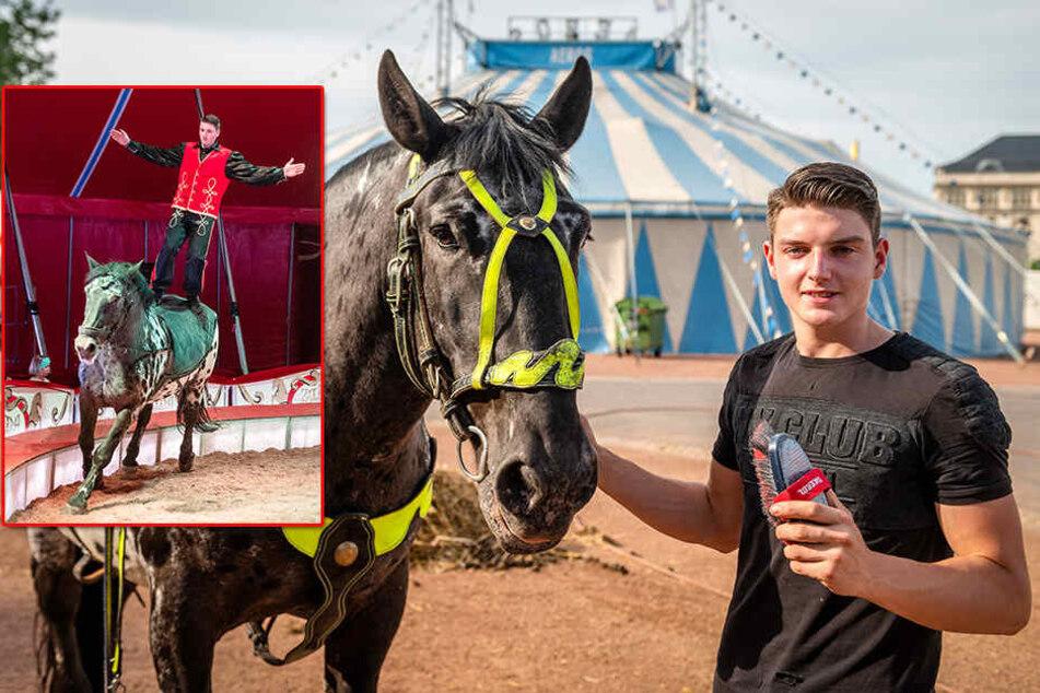 Im Galopp durch die Manege: Chemnitzer (18) erfüllt sich seinen Traum vom Zirkus