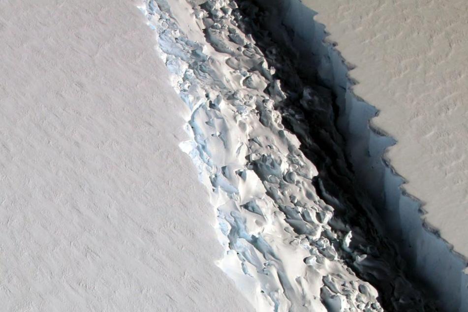 Der Eisberg ist siebenmal so groß wie Berlin. Bereits sein Riss hatte eine Länge von 200 Kilometern!