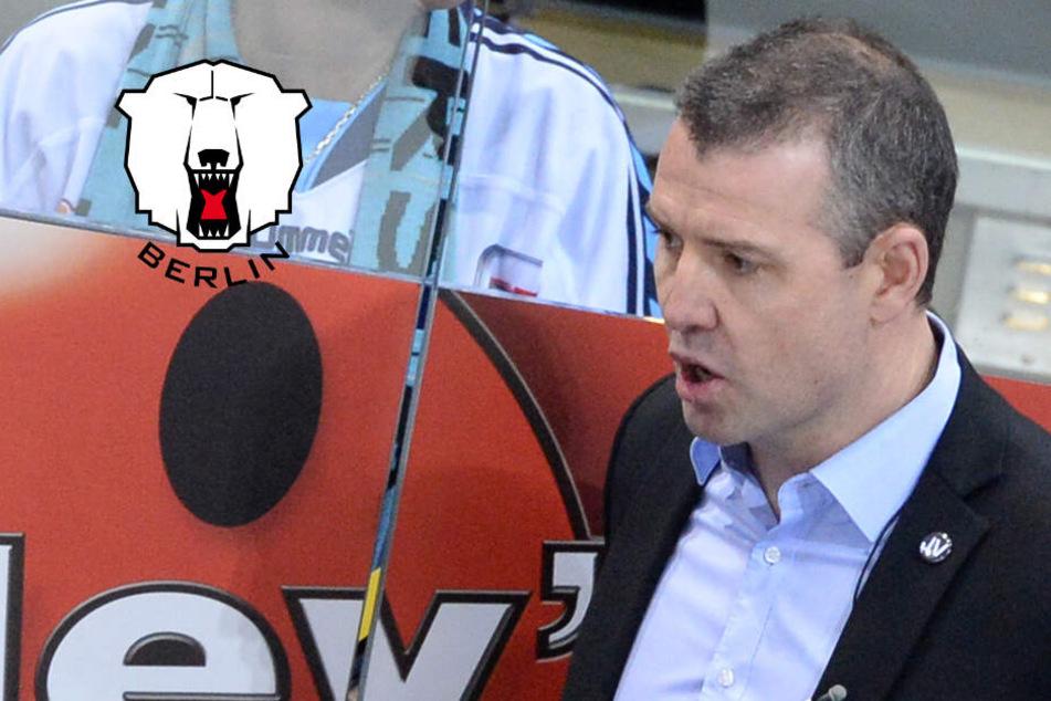 Wird Serge Aubin neuer Eisbären-Coach?