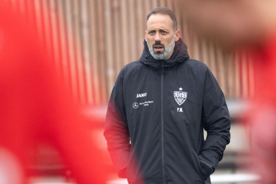 Konzentriert steht der VfB-Coach auf dem Trainingsplatz: Pellegrino Matarazzo.