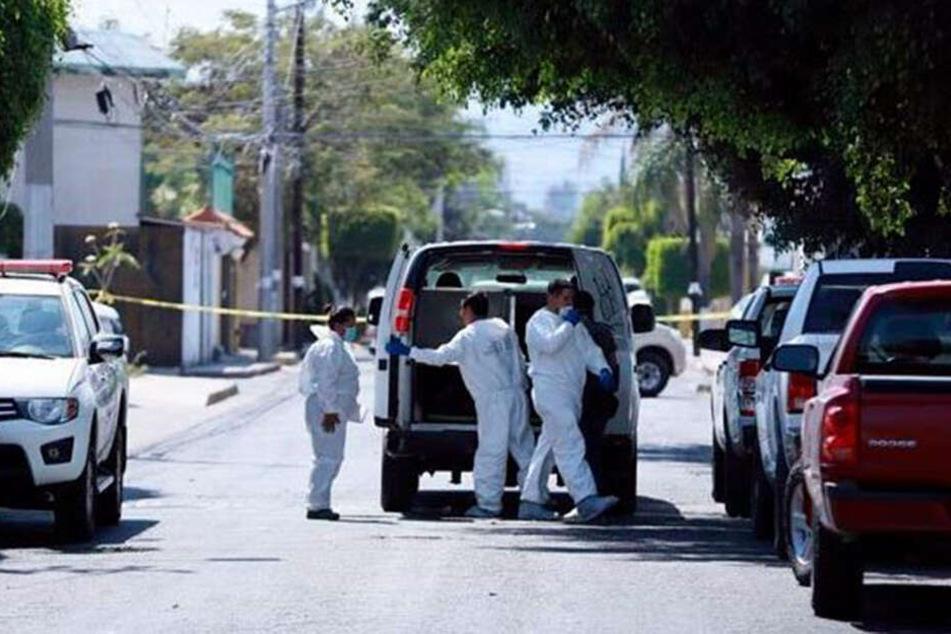 Grausamer Fund! Die Ermittler entdeckten auf dem Grundstück 15 verscharrte Leichen.