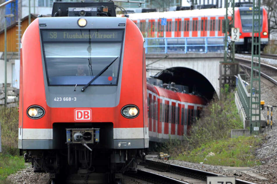 Auch bei der Münchner S-Bahn kommt es während der Sommerferien zu erheblichen Einschränkungen für die Fahrgäste. (Archivbild)