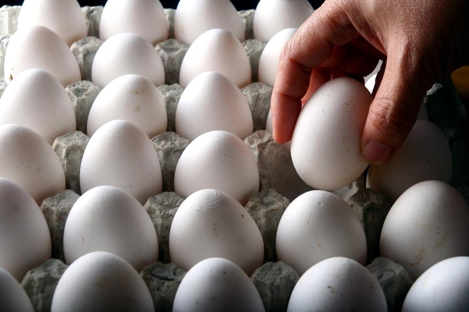 Die Polizei Köln hat fünf Jugendliche (16 bis 19) ermittelt, die im März durch Eier-Würfe einen Auffahrunfall mit hohem Sachschaden verursacht hatten. (Symbolbild)