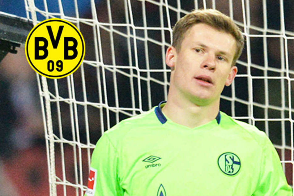 Hammer-Gerücht um Schalke-Keeper: Mischt ausgerechnet der BVB im Poker um Nübel mit?
