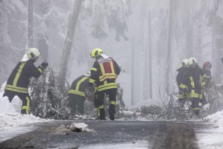 Die Feuerwehr beseitigt Schneebruch am Scheibenberg.