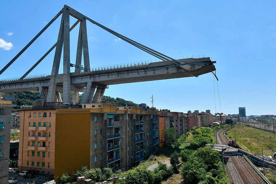 Noch immer liegen Trümmer und Fahrzeuge unter der eingestürzten Brücke.