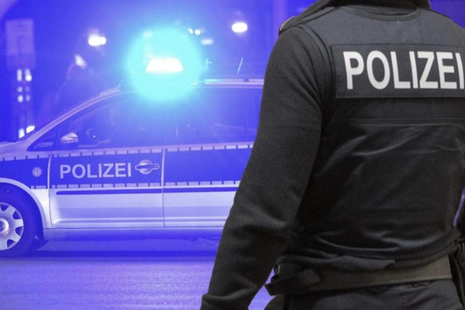 Bei dem nächtlichen Einsatz erwischte die Polizei zwei mutmaßliche Diebe, die nicht allzu gut darin waren, sich vor den Gesetzeshütern zu verstecken. (Symbolbild)