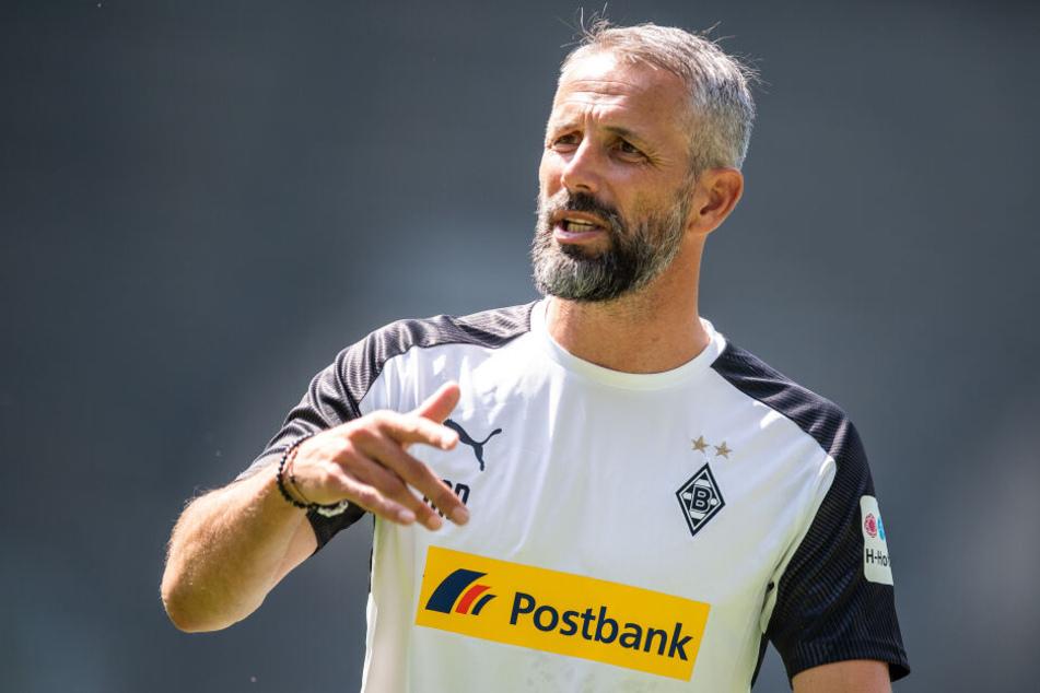 Marco Rose will am Sonntag in Leipzig wählen gehen.