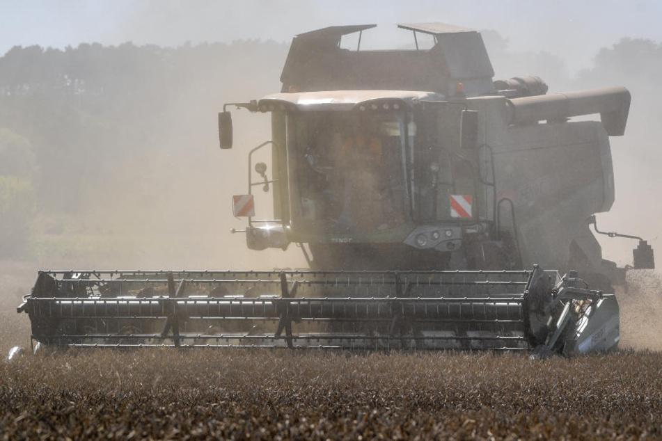 Ein Mähdrescher wirbelt viel Staub bei der Ernte auf. (Symbolbild)