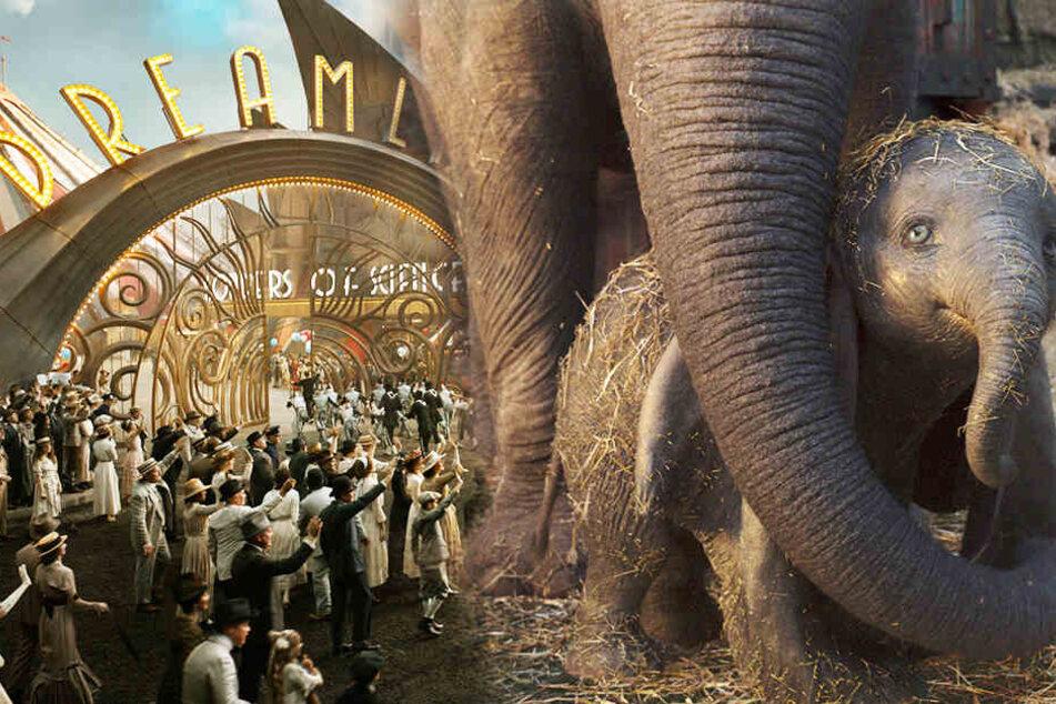"""Dumbo im Arm seiner Mutter. Der kleine Elefant darf seine Flugkünste im Vergnügungspark """"Dreamland"""" unter Beweis stellen. (Bildmontage)"""