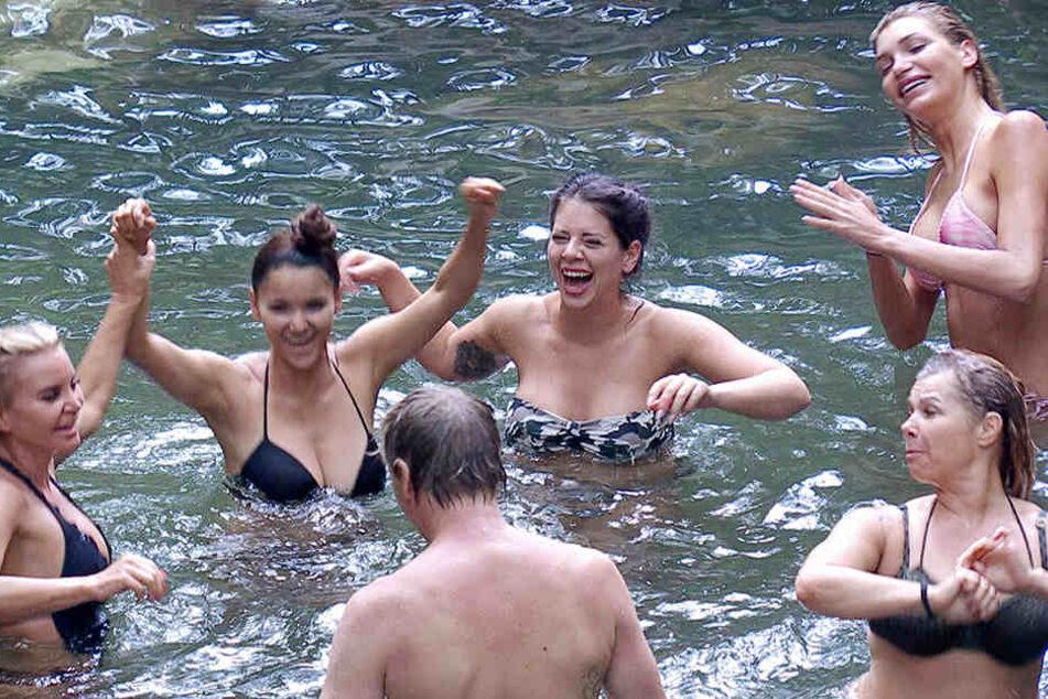 Hahn im Korbe... Ansgar hat Spaß mit den Dschungel-Meerjungfrauen.