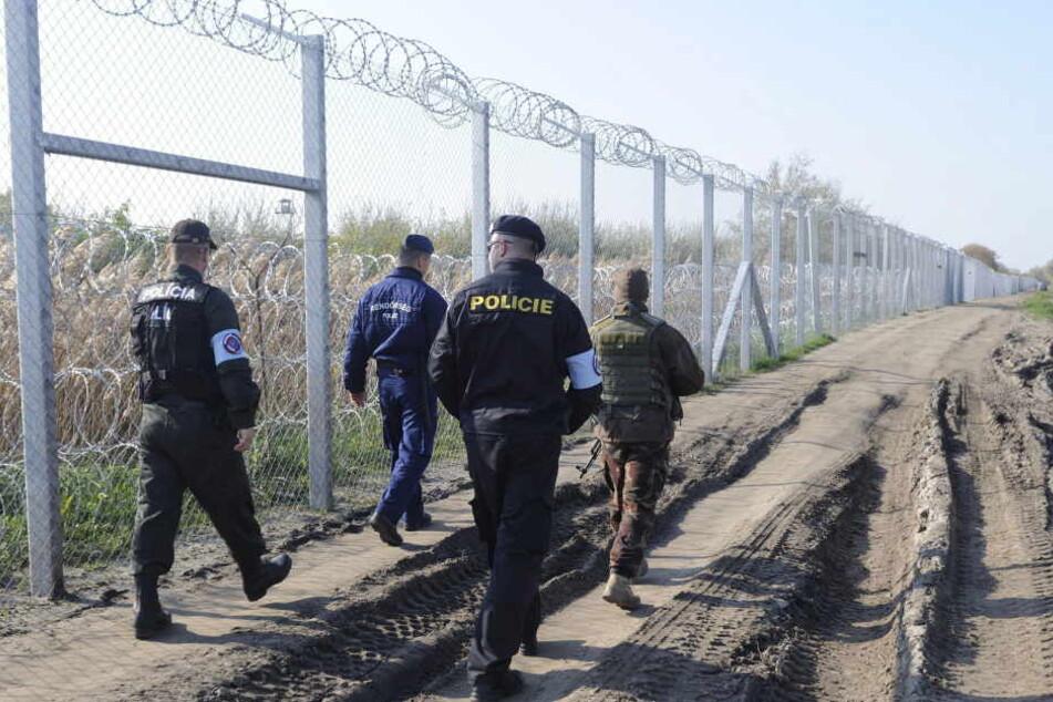 Gemeinsam patroullieren ein tschechischer Polizist, ein slovakischer Polizist, ein ungarischer Soldat und ein ungarischer Polizist an der Grenze von Ungarn und Serbien.