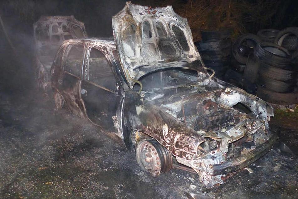Die Wagen brannten allesamt komplett aus.