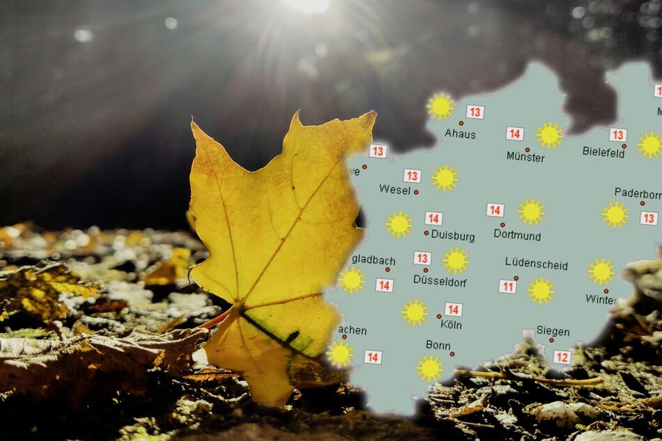 Goldener Oktober am Sonntag, ab Montag bewölkt und etwas Regen