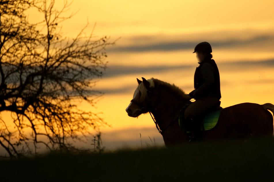 Typ will junge Reiterin von Pferd ziehen, da beißt das Tier zu!